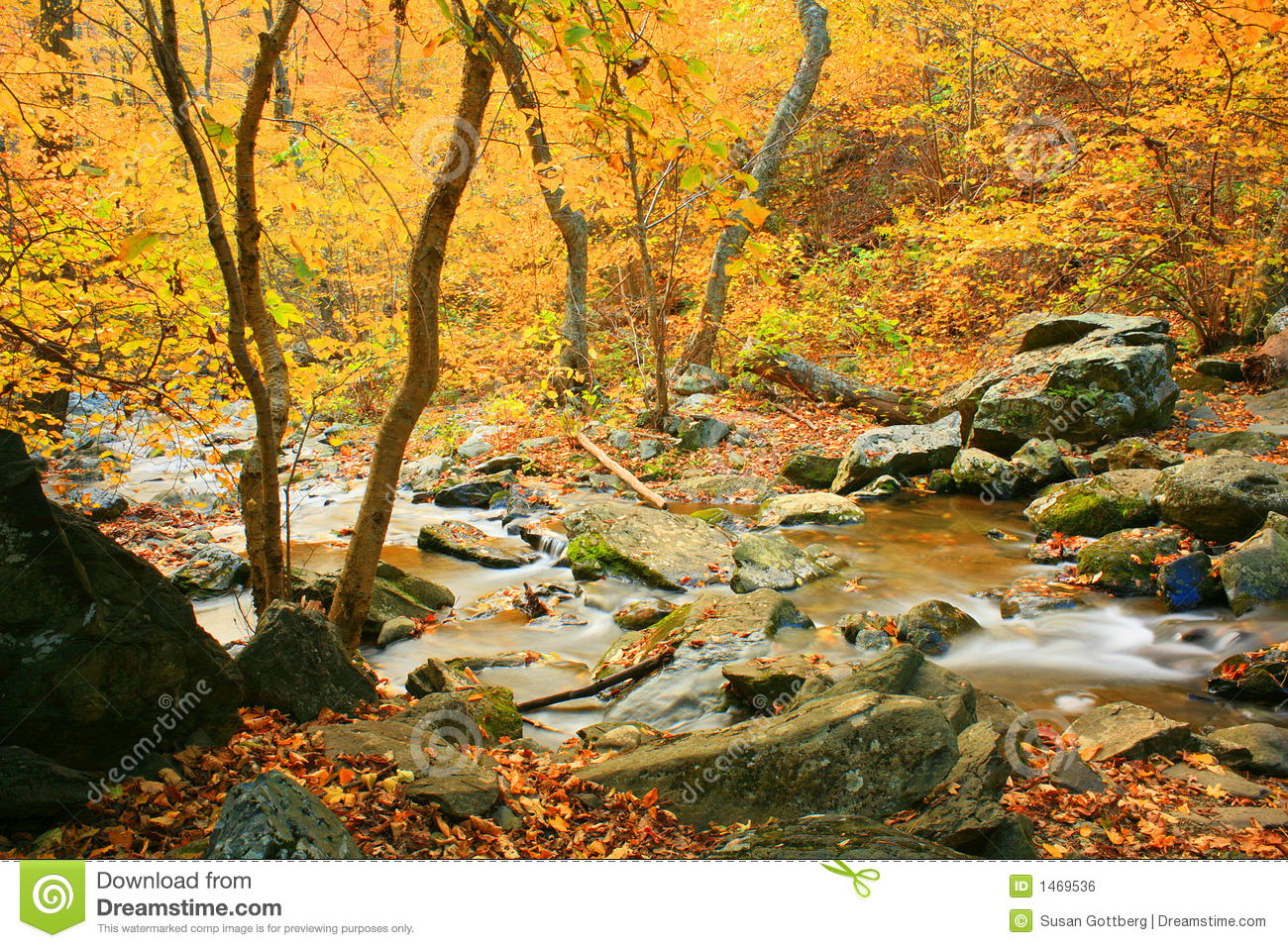 Fall Phone Wallpaper Fall Landscape Stock Photo Image Of Landscape Stones