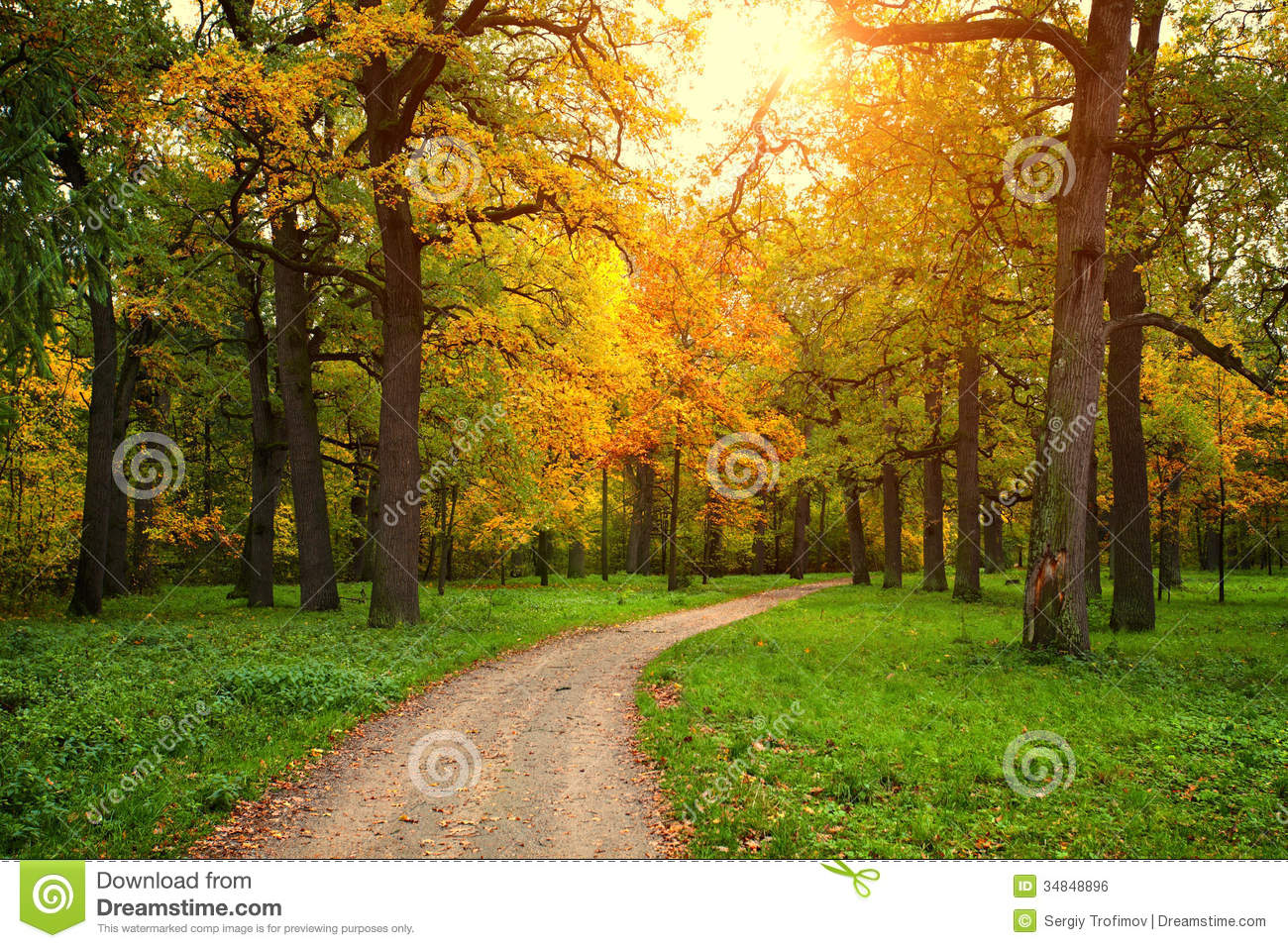 Free Fall Wallpaper With Animals Fall Season In Park With Pathway Royalty Free Stock Image