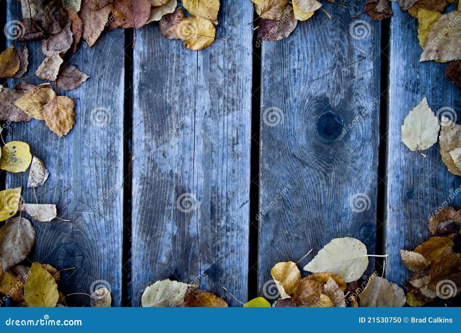 Free Fall Download Wallpaper Fall Wood Background Stock Photo Image Of Seasons