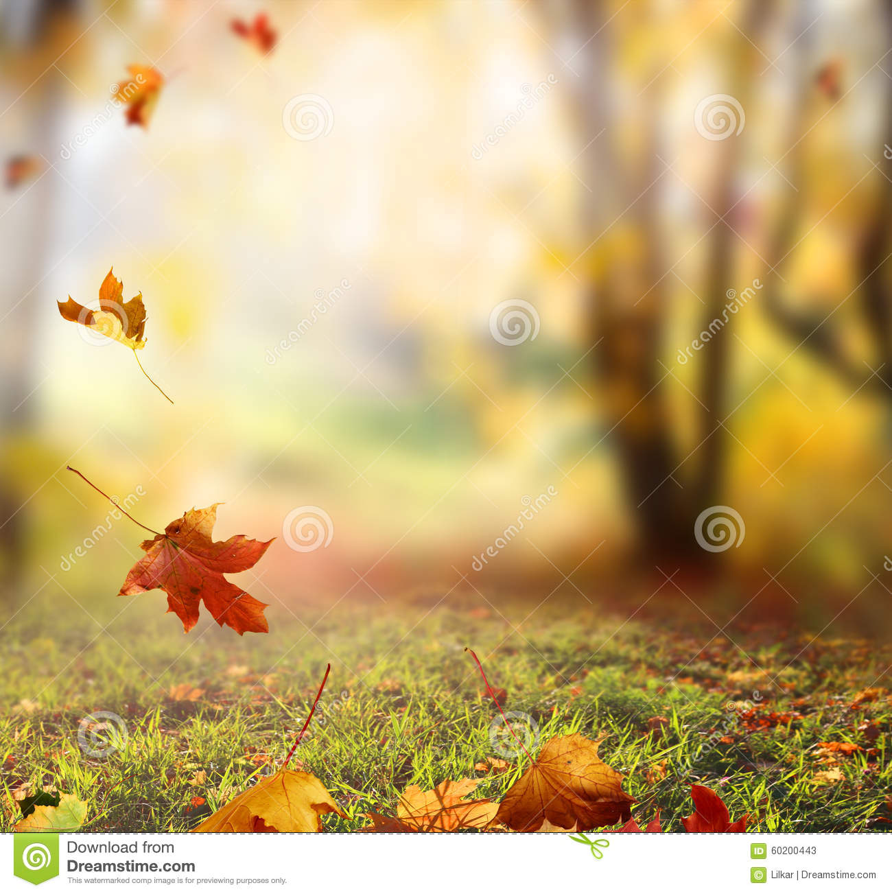 Rustic Fall Desktop Wallpaper Falling Autumn Leaves Background Stock Image Image 60200443