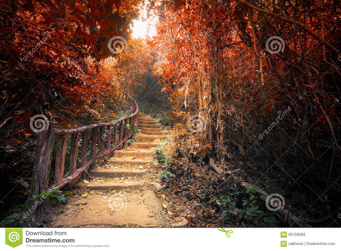 Fall Trees Desktop Wallpaper Fantasy Autumn Forest With Path Way Through Dense Trees