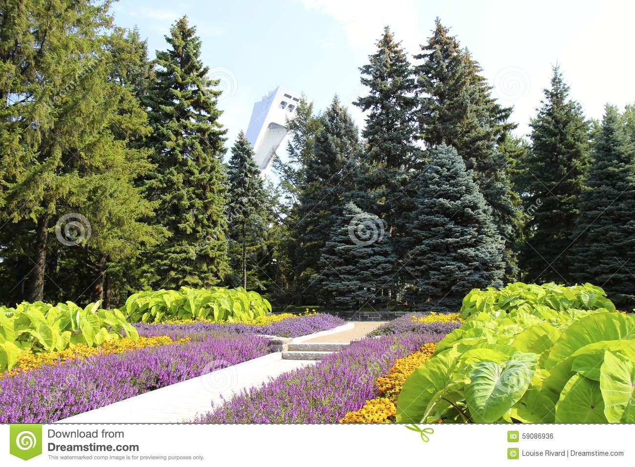 Que Planter En Septembre Fleurs Fleurs Et Stade Olympique De Septembre Photo Stock Image Du