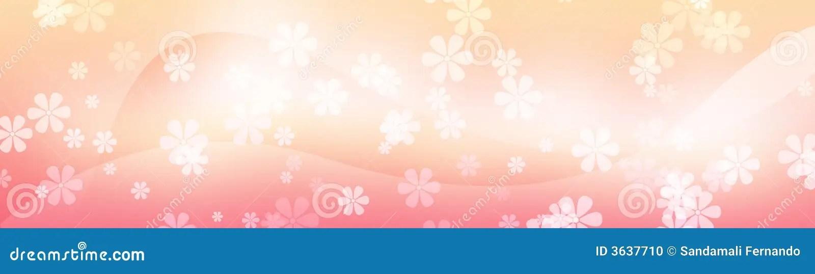 Cute Header Wallpaper Floral Web Header Flower Background Stock Photo Image