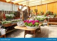 Flower Shop Interior stock photo. Image of florist, image ...