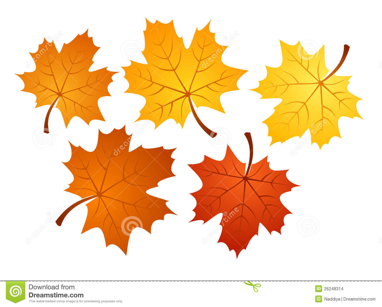 Fall Of The Leafe Wallpaper Folhas De Pl 225 Tano Do Outono De V 225 Rias Cores Illu Do Vetor