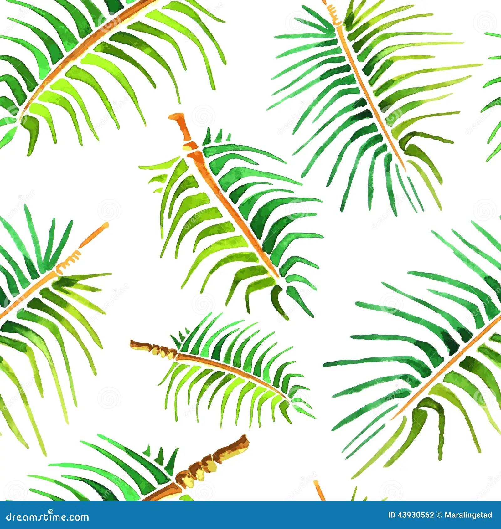 Cute Cactus Wallpaper Macbook Fond De Feuille De Palmier D Aquarelle De Vecteur