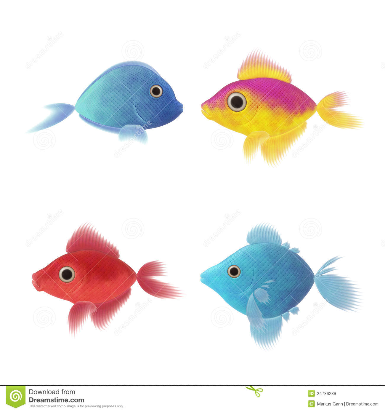 Colorful Animal Print Wallpaper Four Fish Illustrations Royalty Free Stock Images Image