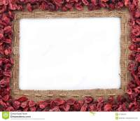 Frame Made Of Burlap With Dried Cranberries Stock Photo ...