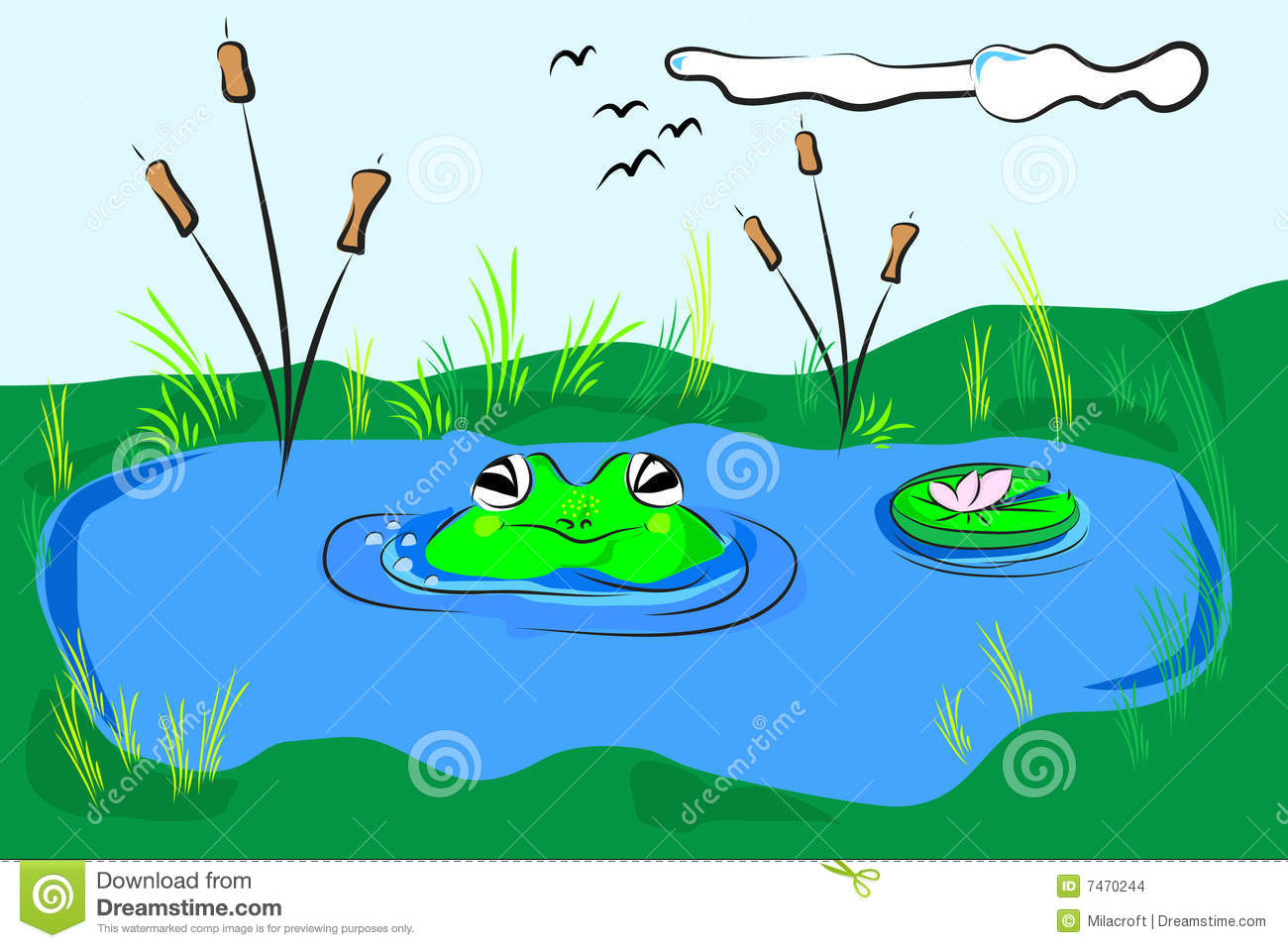 cartoon pond