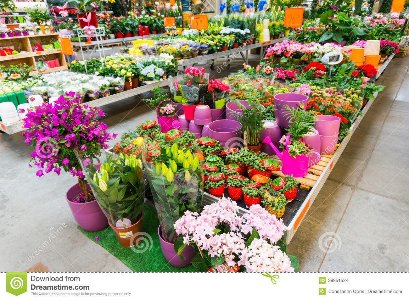 Garden Sale Home And Garden Store In Spring Stock Image
