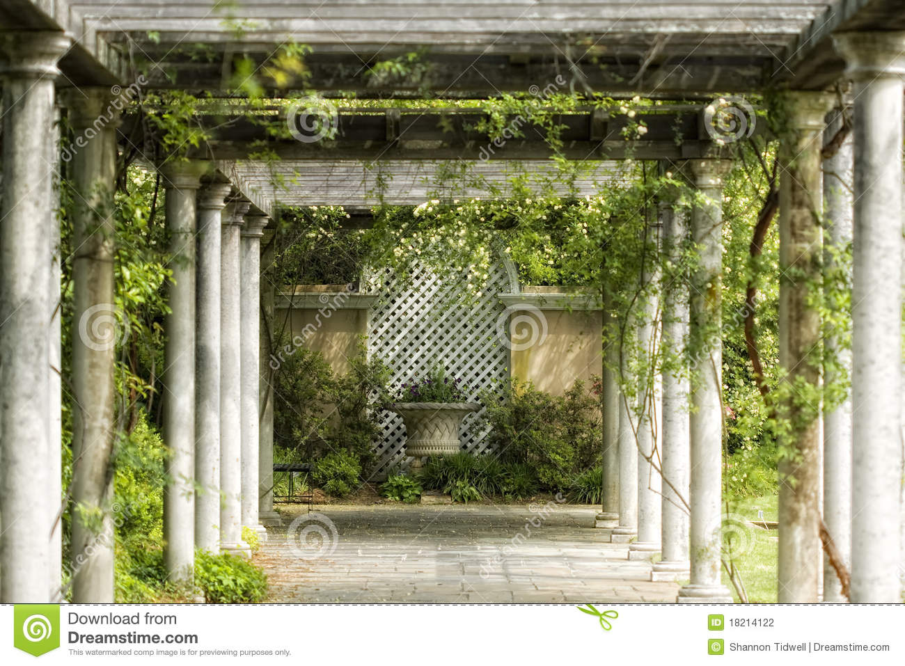 3d Flower Mural Wallpaper Garden Vines Walkway Stock Photo Image Of Color Canopy