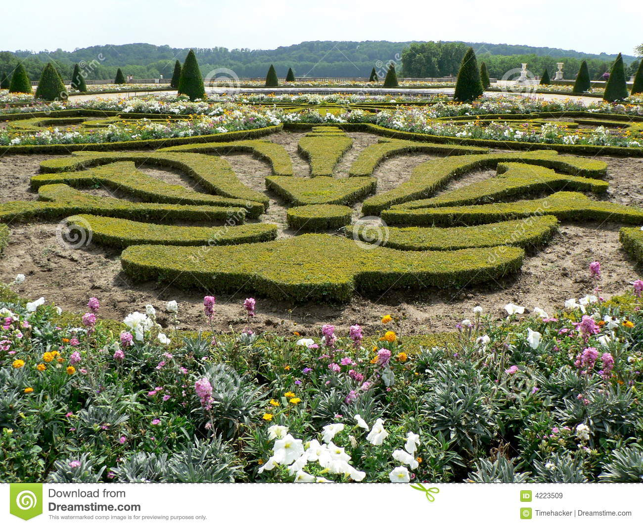 Barockgarten Plan Gardens Of Versailles Stock Image Image Of King Flower