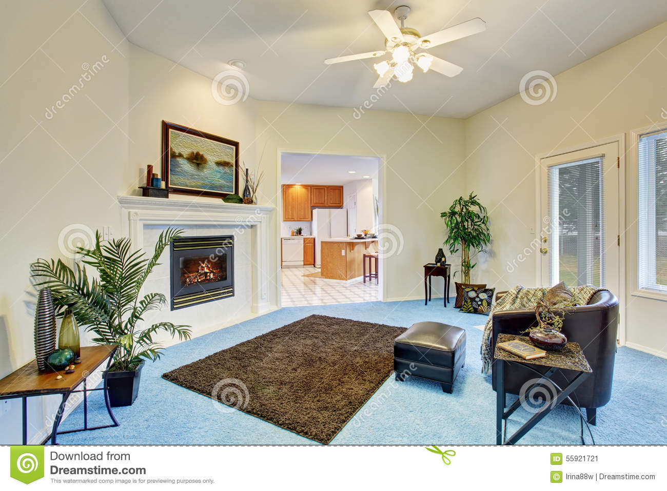 Decoration Nice Blue Living Room Carpet