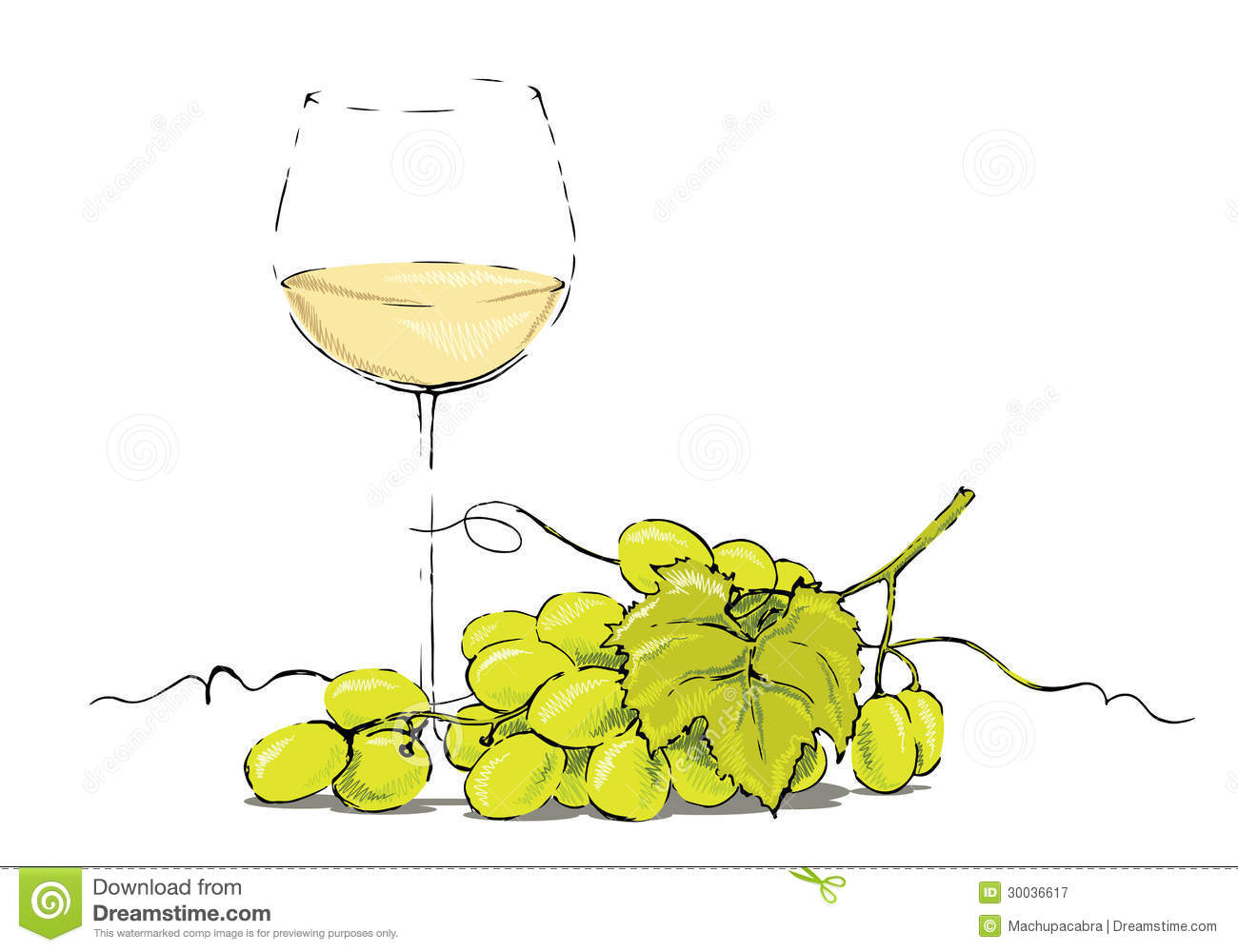 Weinglas Clipart Kostenlos White Wine With Grapes Stock Vector Image Of Restaurant