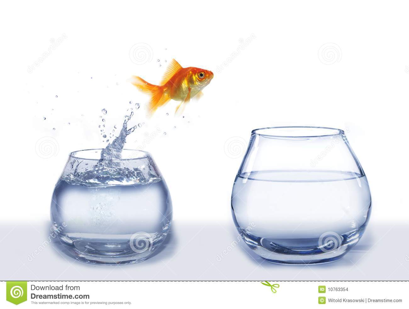 Download 3d Moving Wallpapers For Windows 7 Gold Jumping Out From Aquarium Fish Stock Photo Image Of
