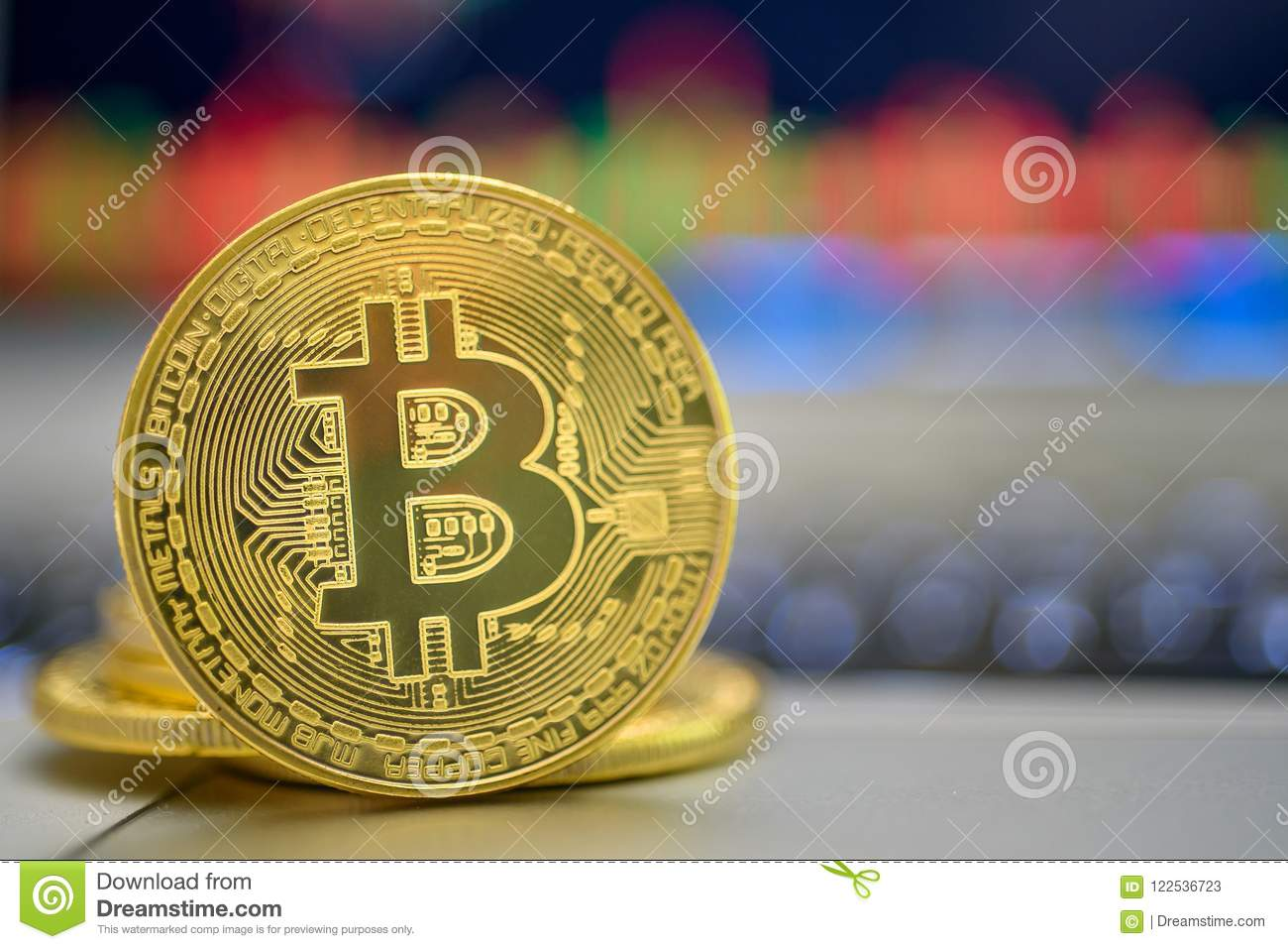 Rib Bank Gold Bitcoin Standing On A Rib Near The Laptop With Trade Charts