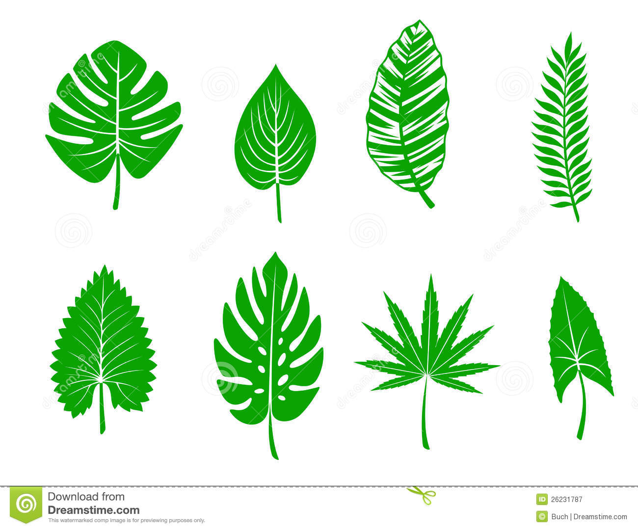 3d Flower Wallpapers Free Download Green Tropical Leaves Stock Vector Illustration Of Leaf