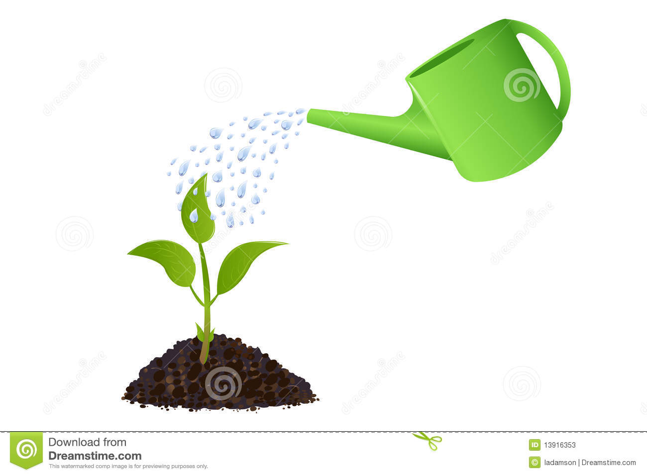 Plant Watering Cans Green Young Plant With Watering Can Vector Stock Vector