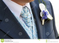 Groom's Tie Royalty Free Stock Photo - Image: 2297565