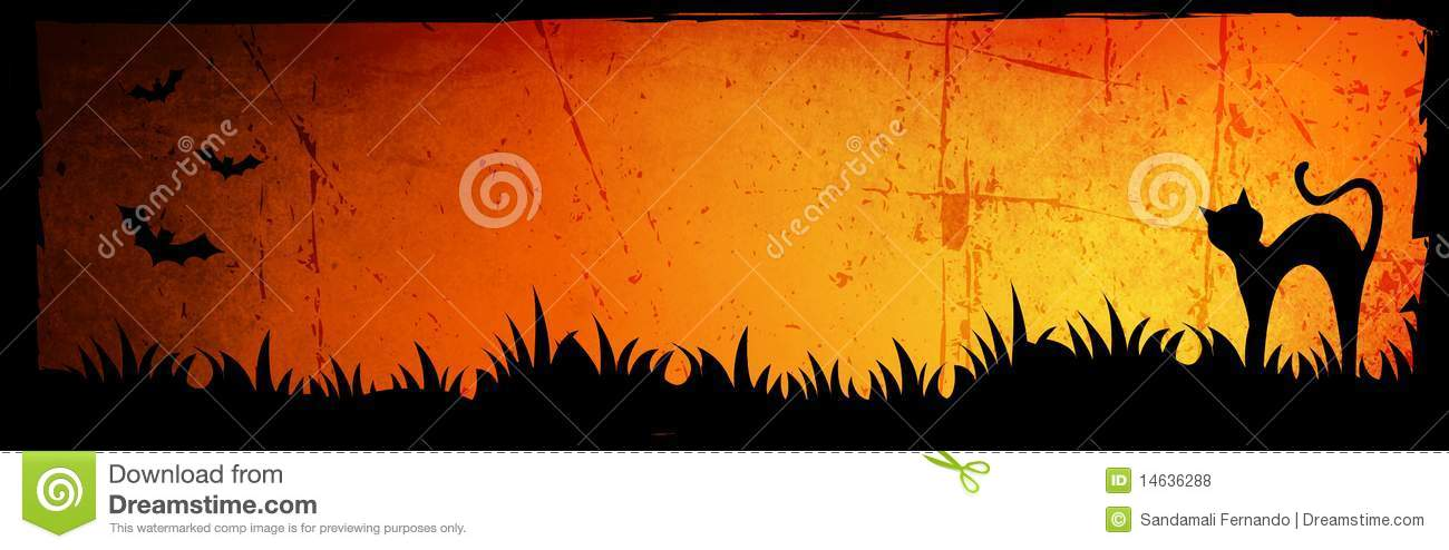 Cat In Fall Wallpaper Background Halloween Header Background Royalty Free Stock Photos
