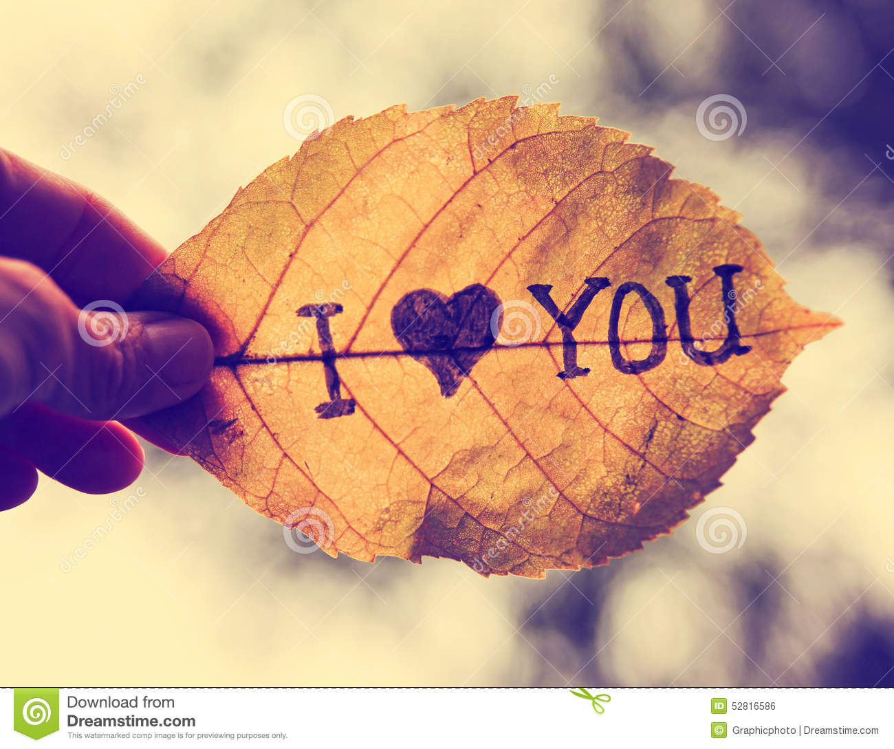 Dark Fall Wallpaper A Hand Holding A Leaf That Reads I Love You Stock Photo