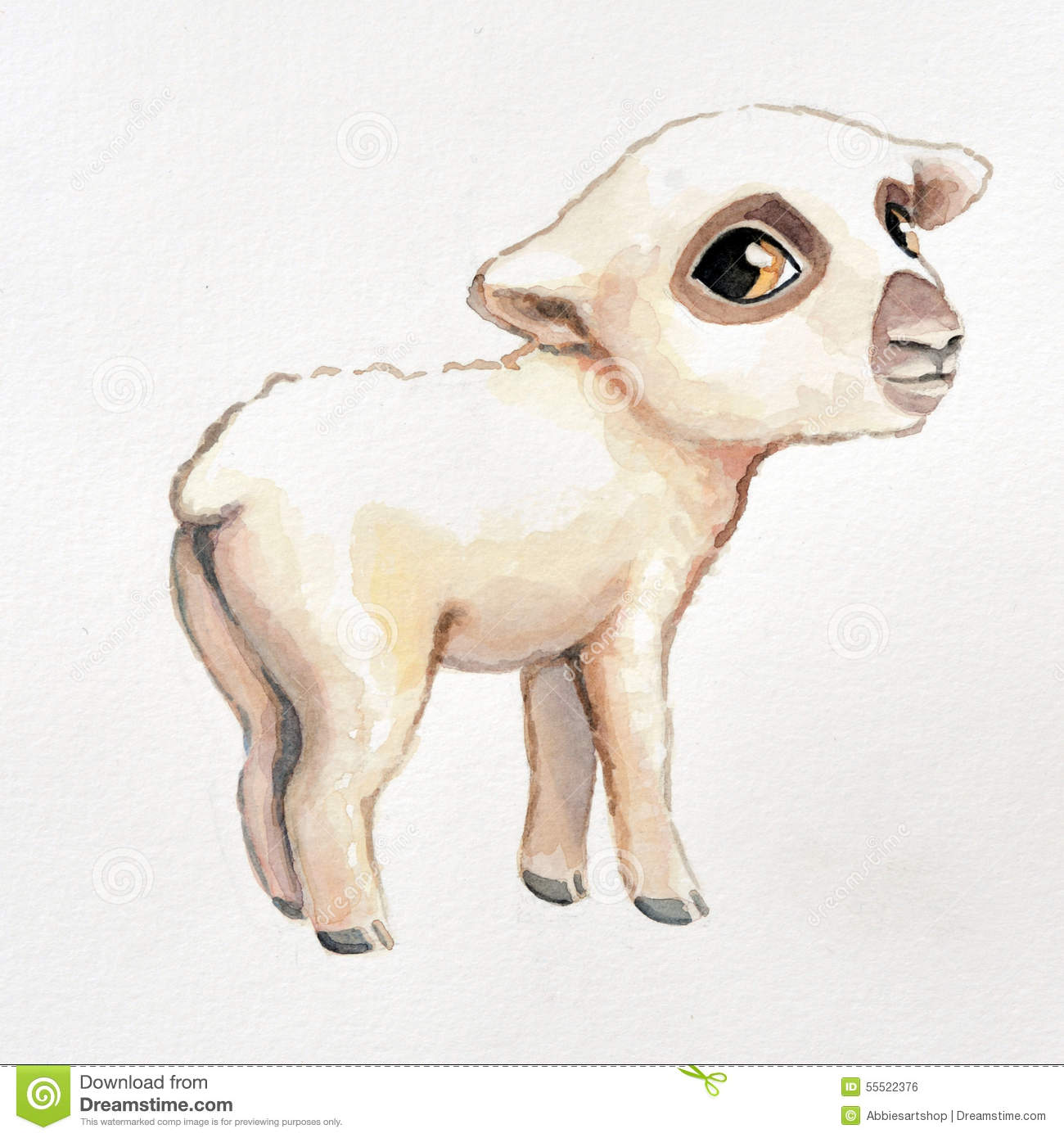 Baby Lamb Drawing Hand Painted Watercolor Baby Lamb Illustration Cute Soft