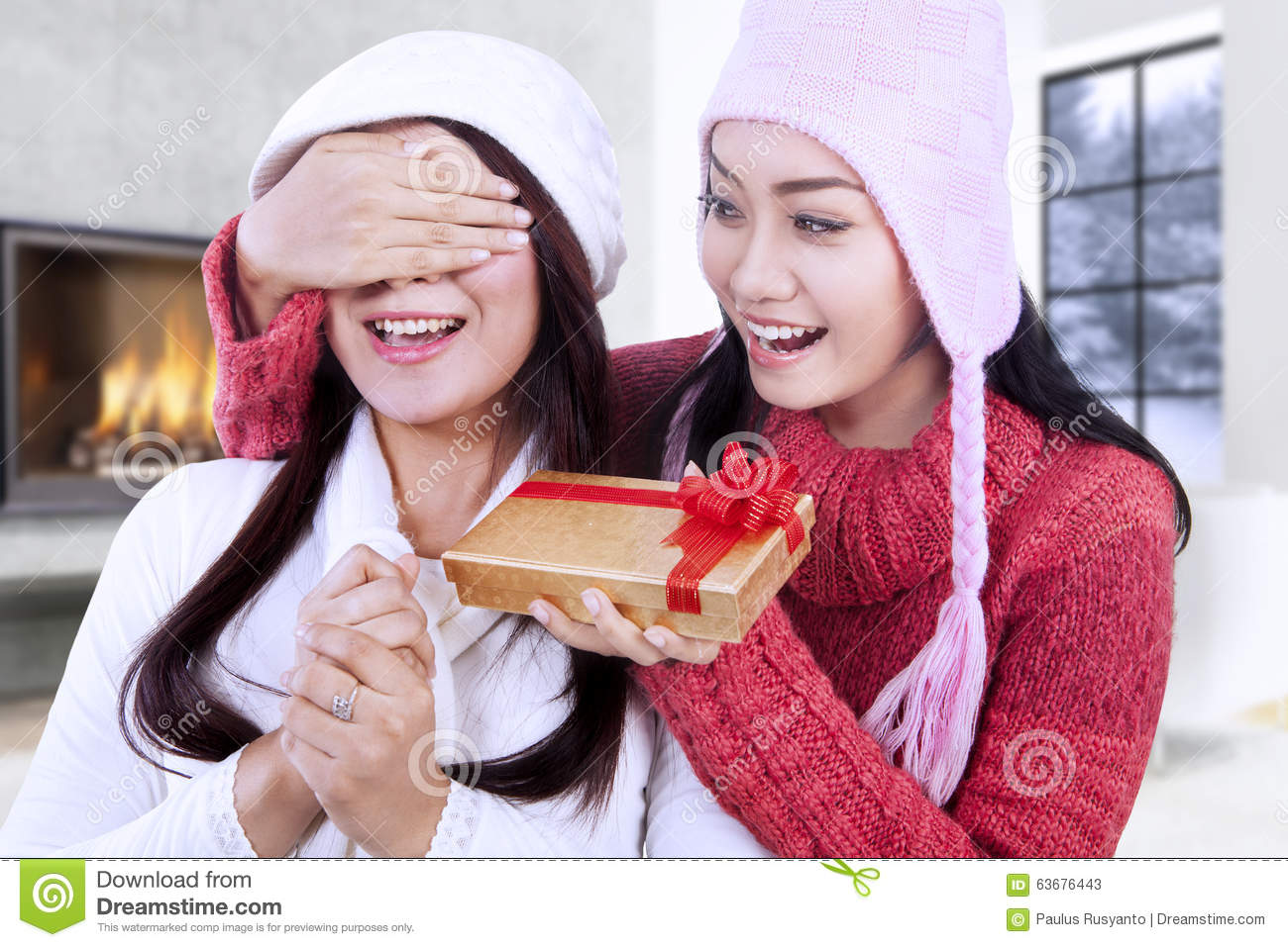 Christmas Gift For A Friend Happy Woman Giving Christmas Gift On Her Friend Stock Image