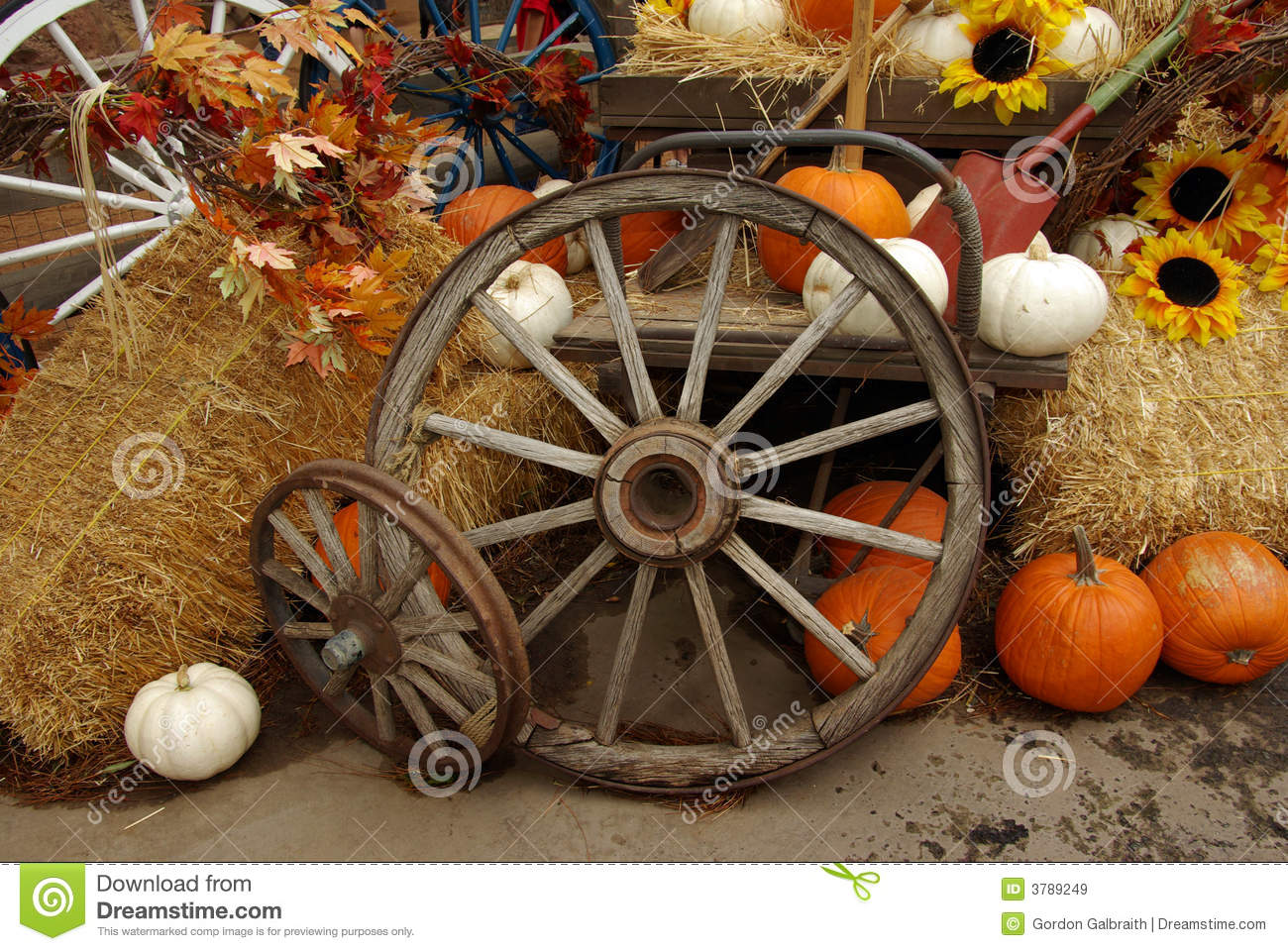 Fall Scenes Wallpaper With Pumpkins Harvest Scene Stock Image Image Of Vintage Fall Wagon