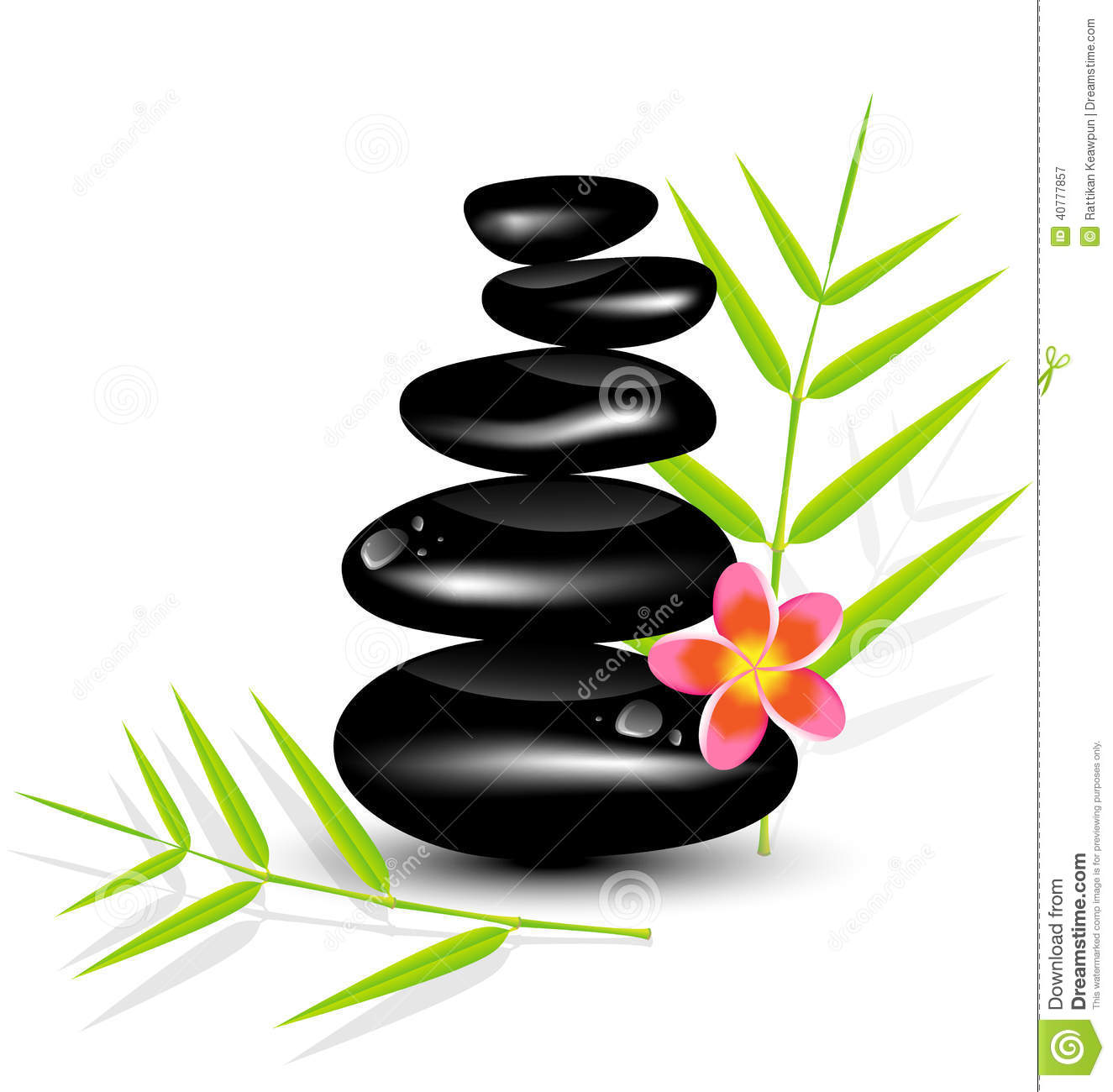 Salon De Massage 94 Hot Stone Massages And Bamboo Leaf Stock Vector Image
