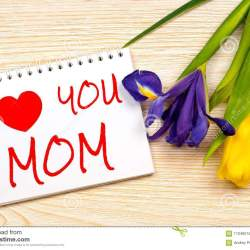 I Love You Mom Card With Iris and Tulip Stock Photo Image Of