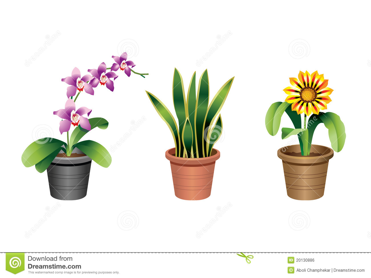 Indoor Plants For The Office Indoor Home And Office Plants Stock Vector Illustration Of