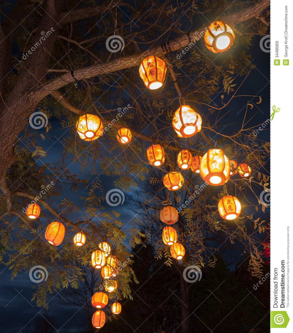 Laptop Wallpapers Fall Lanterns In Tree Stock Image Image Of Dark Eventide
