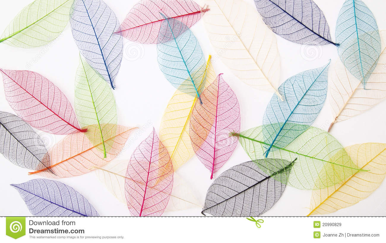 Fall Leaf Iphone Wallpaper Leaves Background In Pretty Pastel Colors Royalty Free