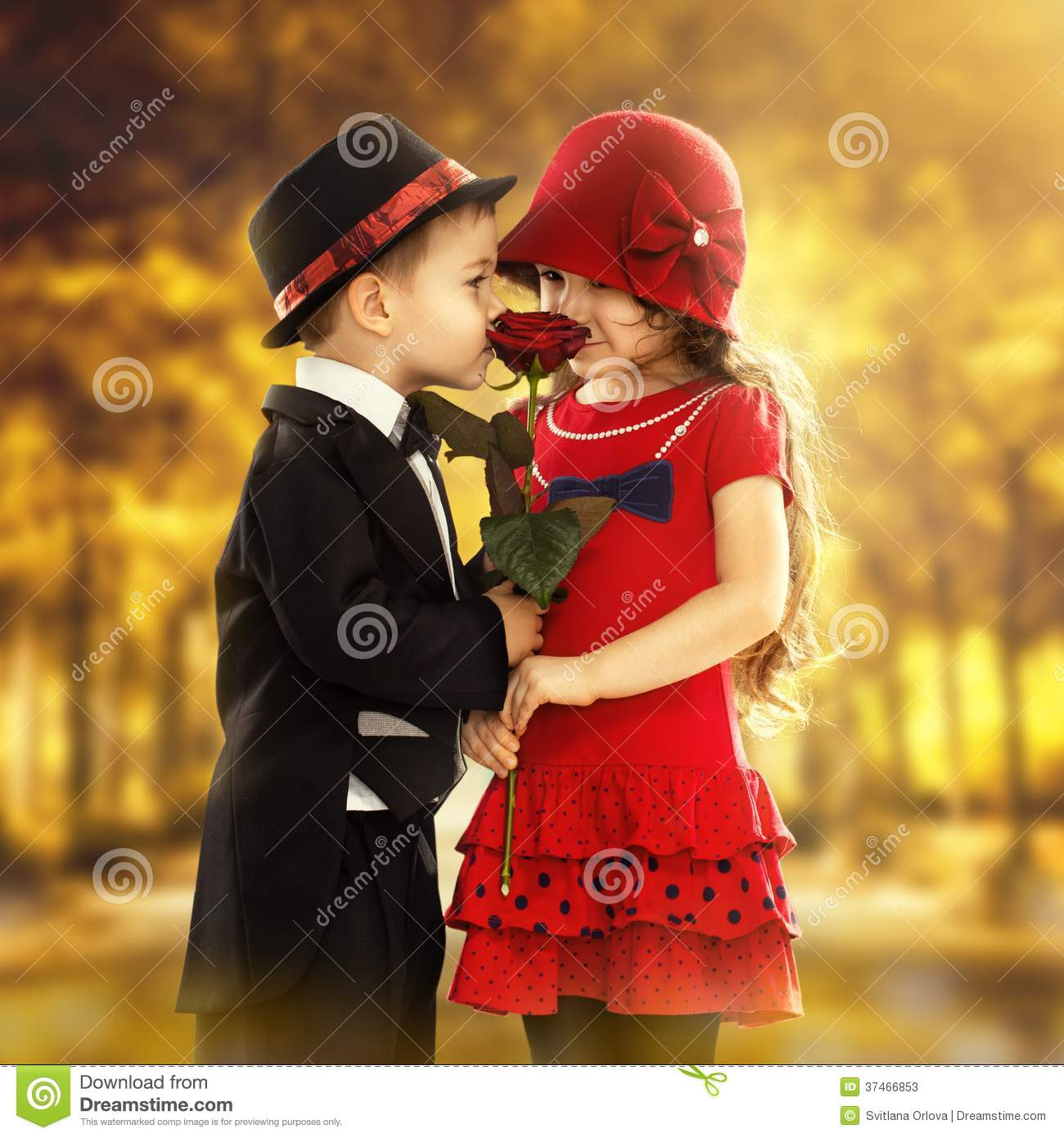 Cute Couples Holding Hands Wallpapers Lovely Little Boy Giving A Rose To Girl Stock Image