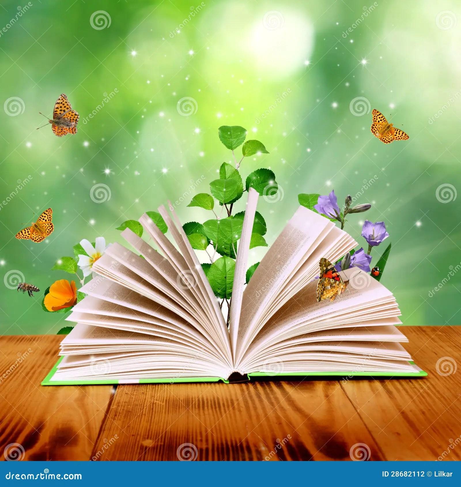 Stock Graphy Magic Book