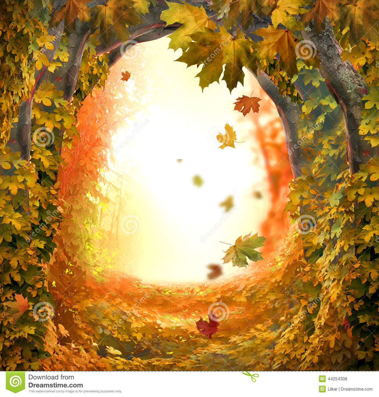 Fall Fairy Wallpaper Magic Forest Stock Photo Image 44254308