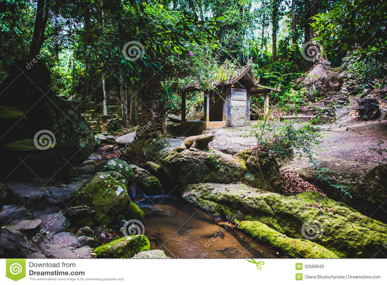 Feengarten Anlegen Magic Garden In Koh Samui Stock Photos Image 32568943