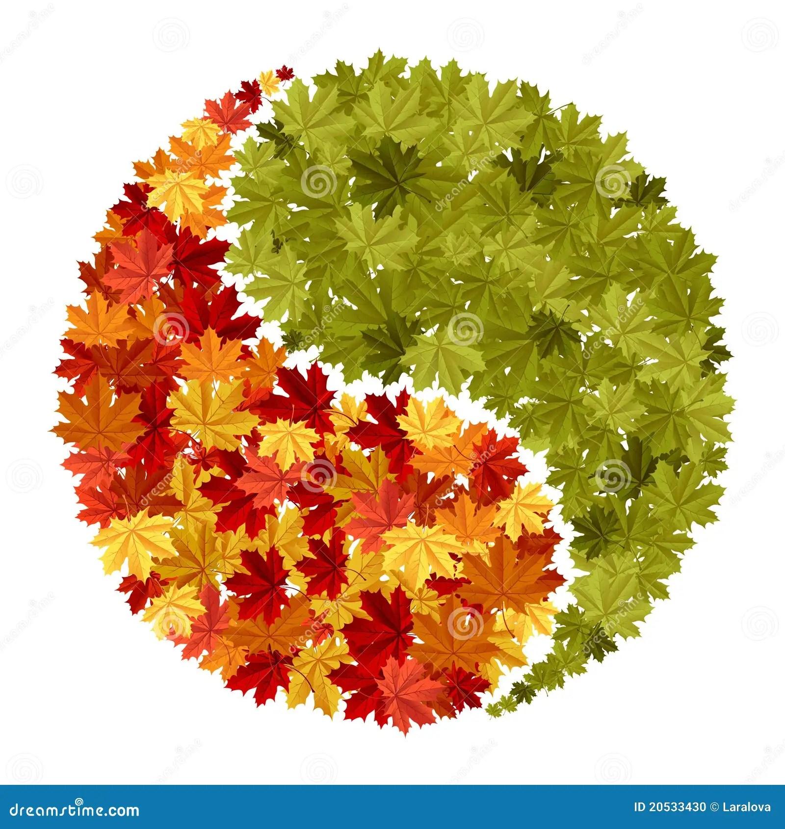 Free Wallpaper Fall Season Maple Yin Yang Symbol Stock Vector Image Of Balance