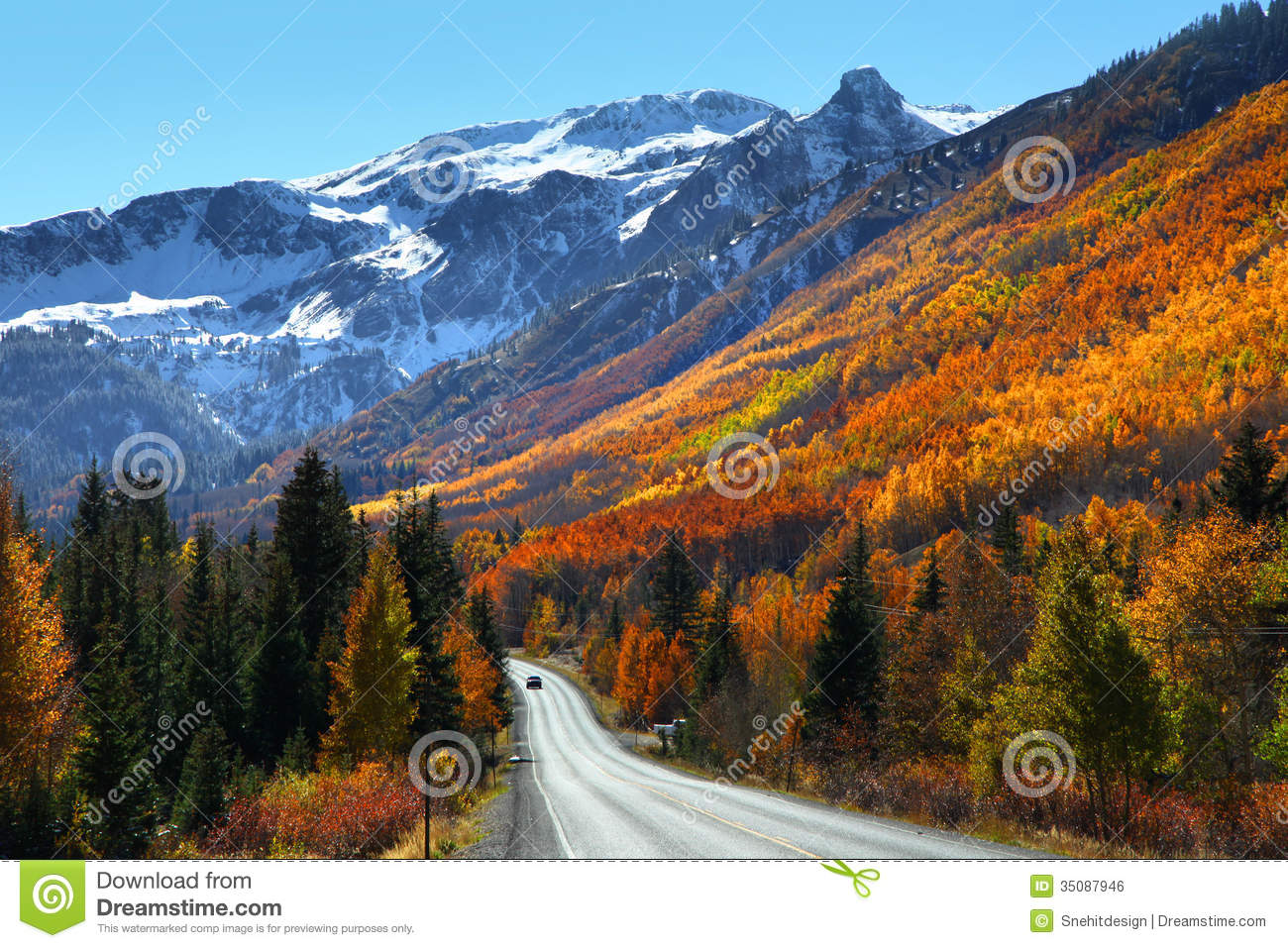 Fall Aspens Wallpaper Million Dollar Highway Royalty Free Stock Image Image