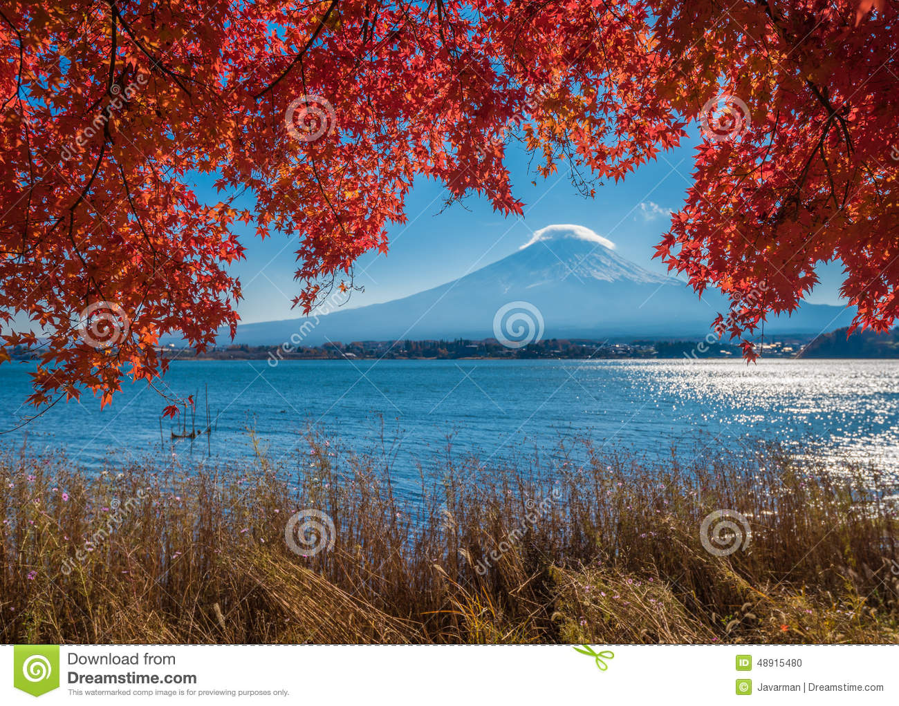 Windows Wallpaper Fall Mount Fuji And Autumn Maple Leaves Kawaguchiko Lake