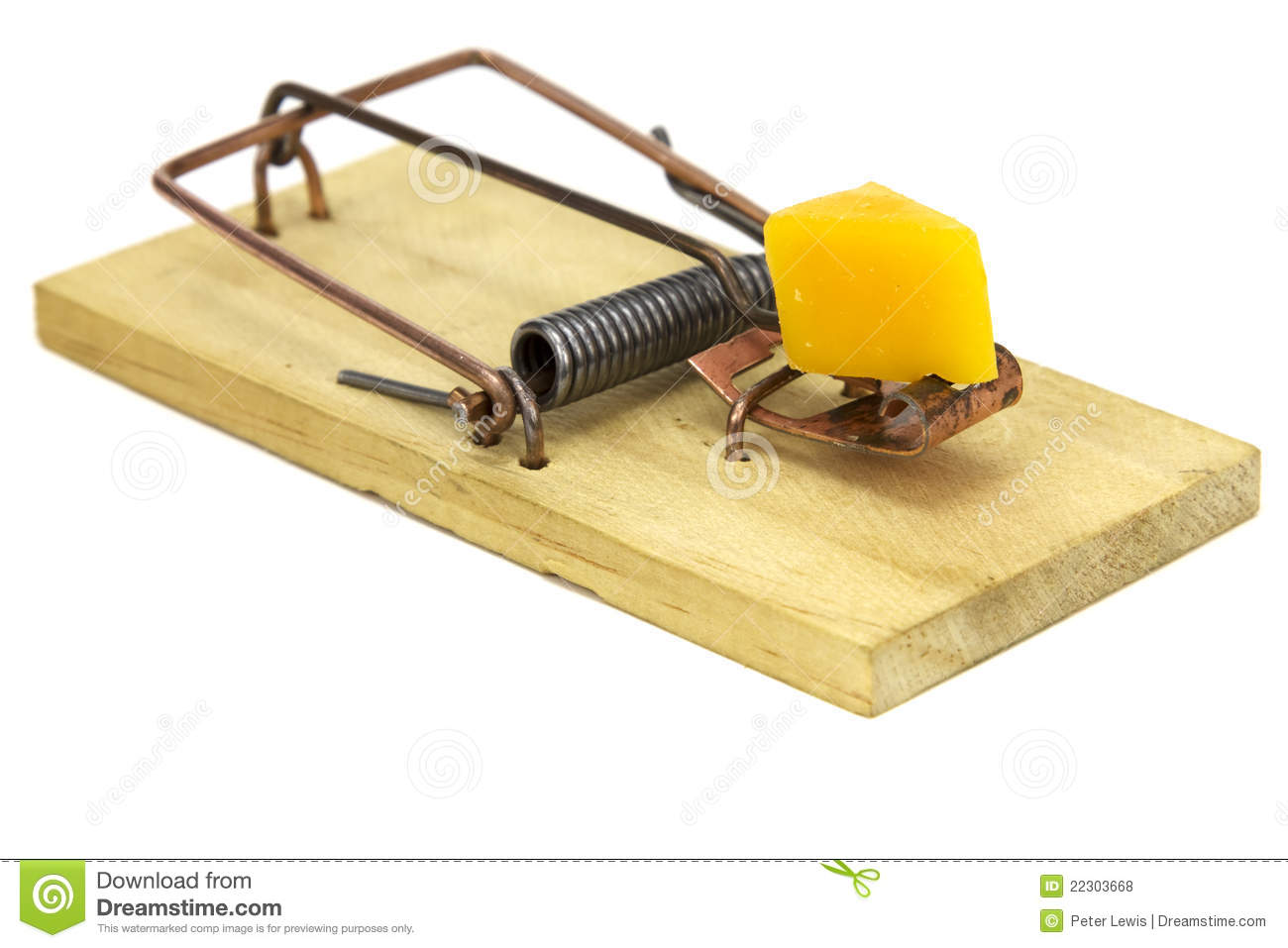 Electrische Muizenval Mouse Trap Royalty Free Stock Photos Image 22303668