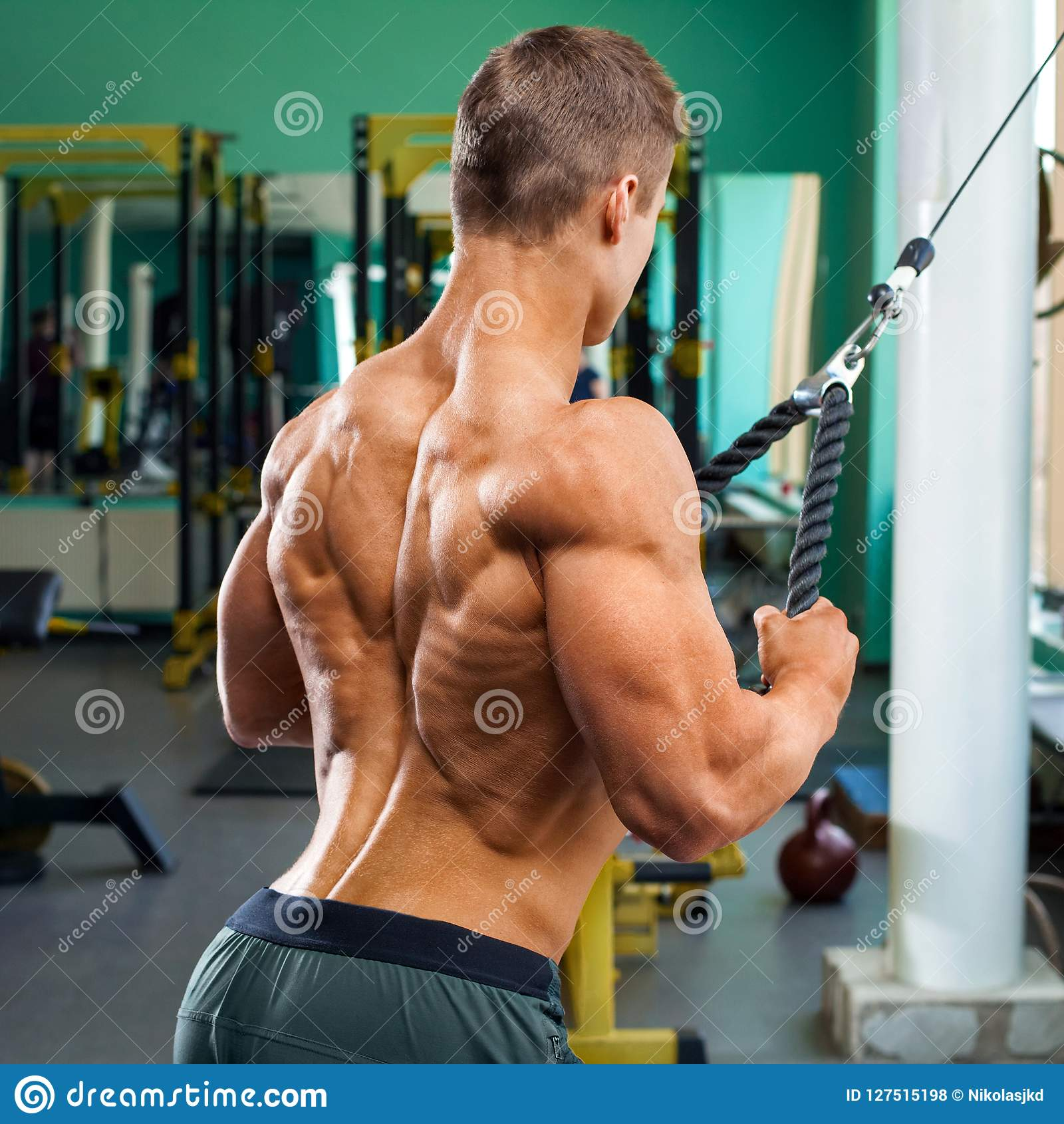 Pullover In Gym Muscular Back Bodybuilder Man Doing Pullover For Lats In