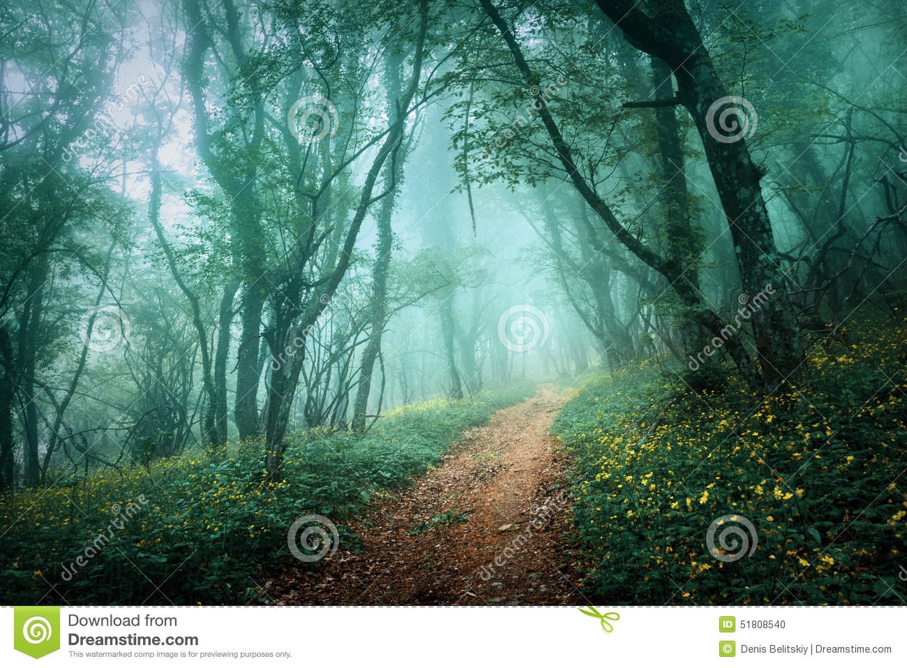 Spooky Fall Wallpaper Mysterious Dark Forest In Fog With Flowers And Road Stock