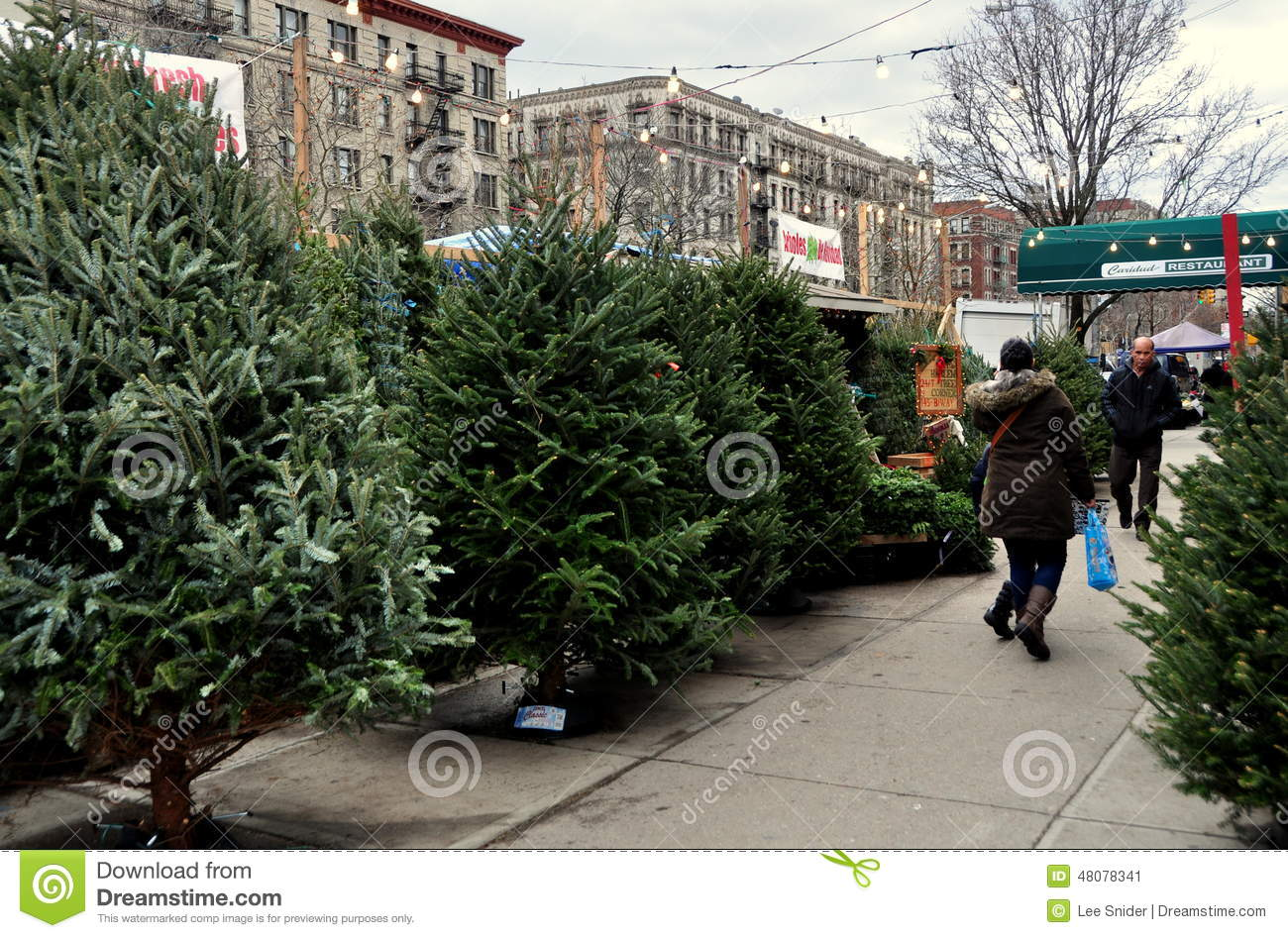 Christmas Tree Stand For Sale Nyc Sidewalk Christmas Tree Stand Editorial Photo Image Of