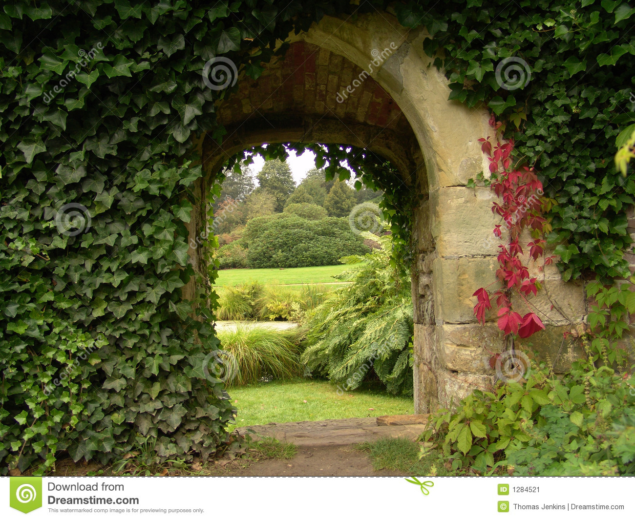 3d Door Wallpaper Old Archway In Garden Stock Image Image Of Plants