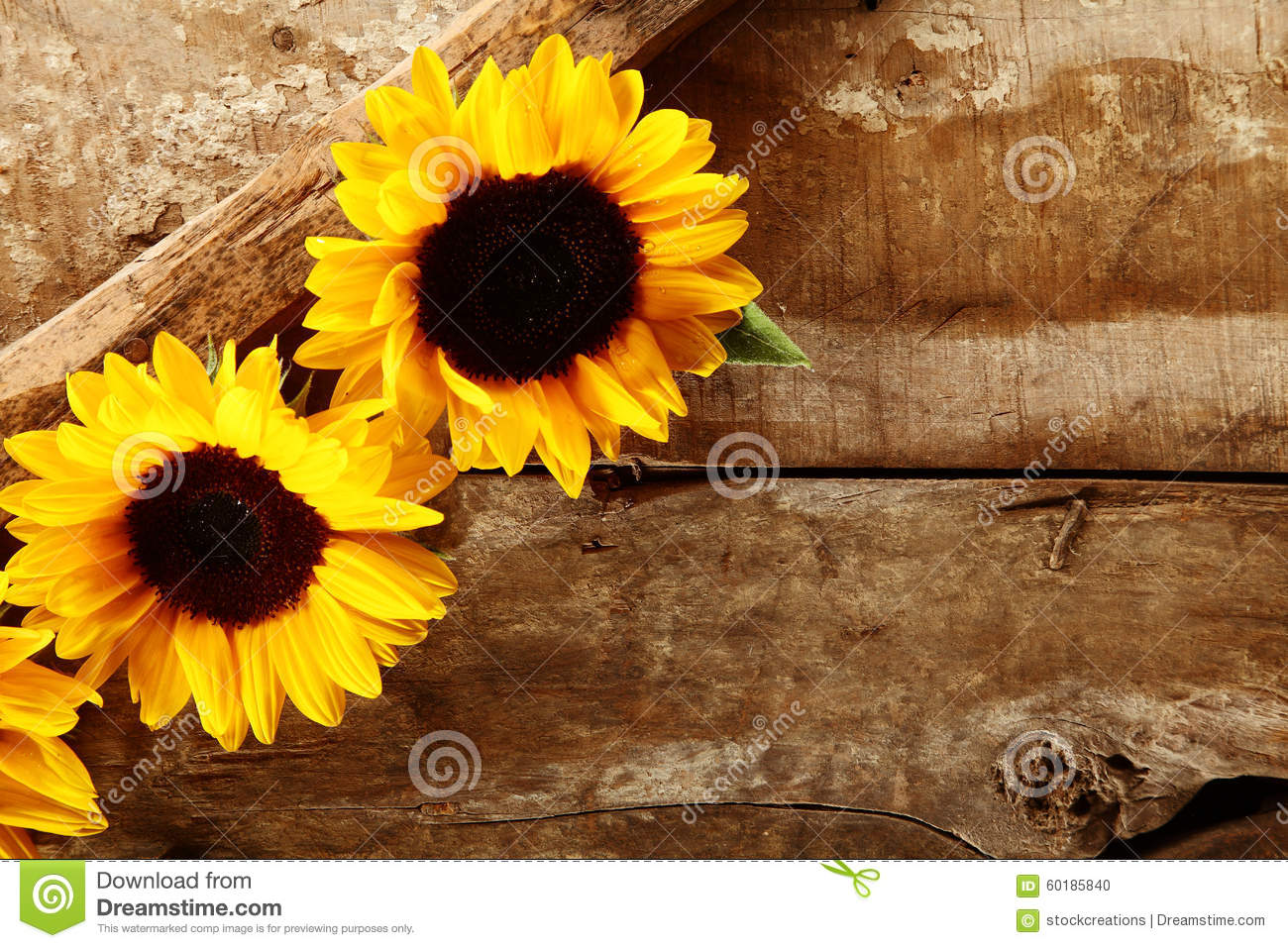 Free Fall Harvest Desktop Wallpaper Background With Sunflowers Daisies Cornflowers And Ears