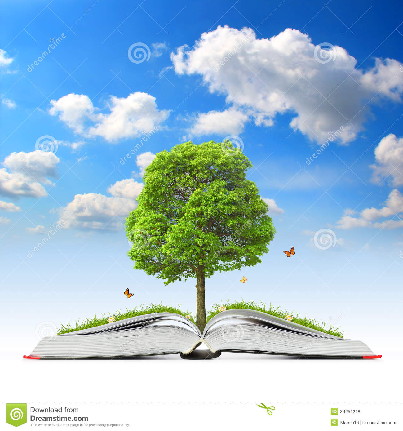 Newborn Baby Girl Wallpaper Open Book With Tree And Grass Royalty Free Stock Photos