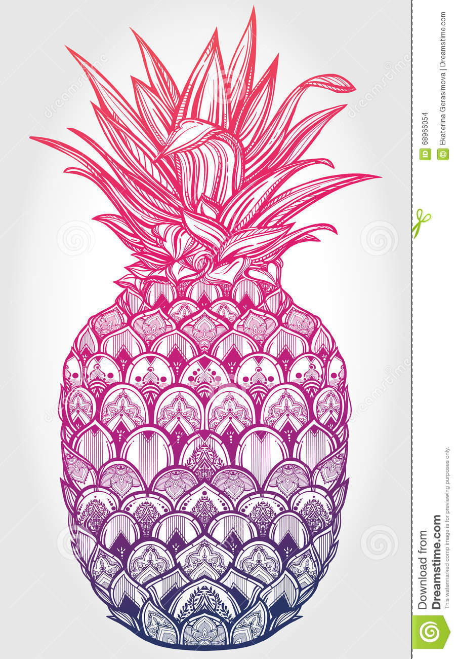 Cute Wallpapers Cocoppa Ornate Pineapple Fruit Vector Illustration Stock Vector