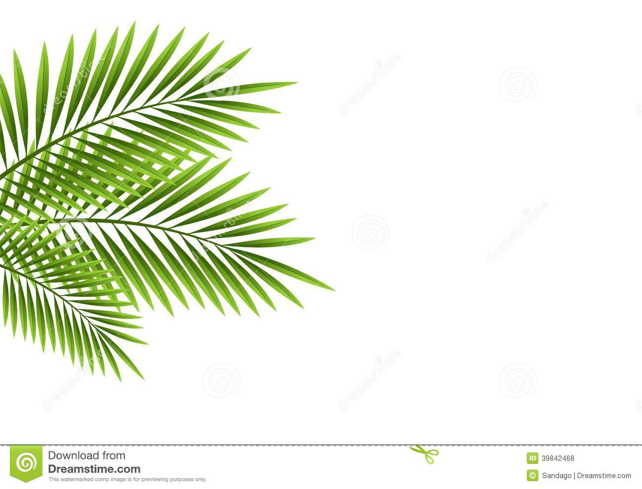 Iphone X Frame Wallpaper Palm Leaves Stock Vector Illustration Of Bright Object