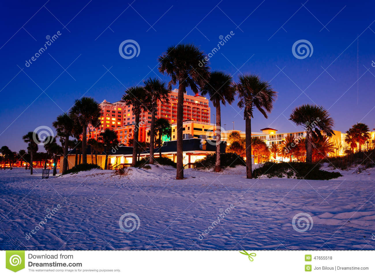 60 Clipart Palm Trees On The Beach At Night In Clearwater Beach
